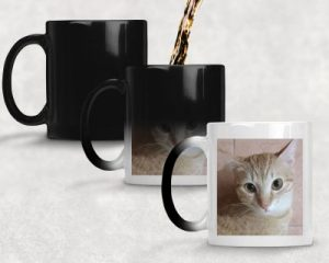 Custom Magic Mug / Color Changing Mug